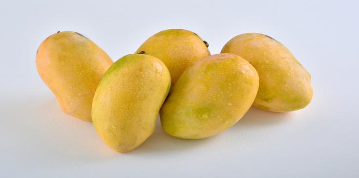 chaunsa mango nutritious varieties of mango