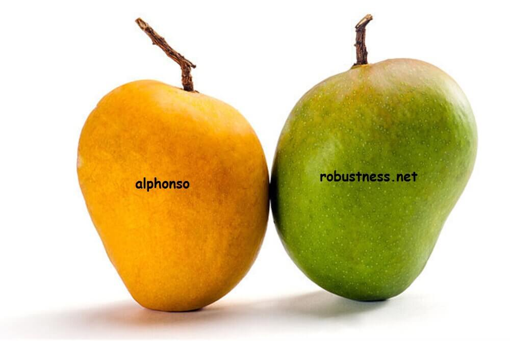 Alphonso mango top variety in india