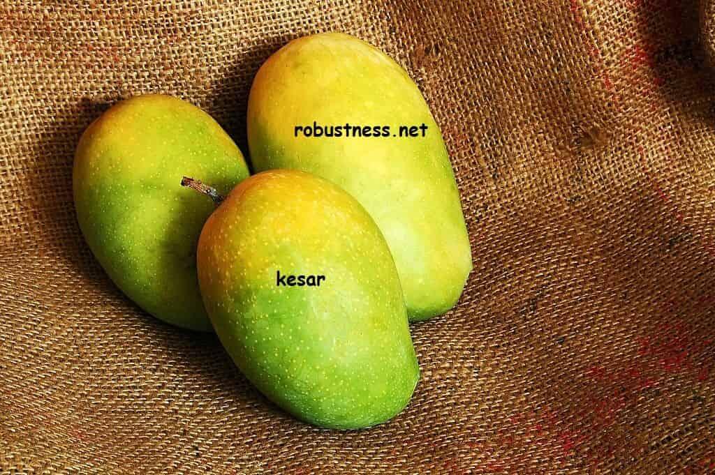 gujrati mango kesar or gir kesar